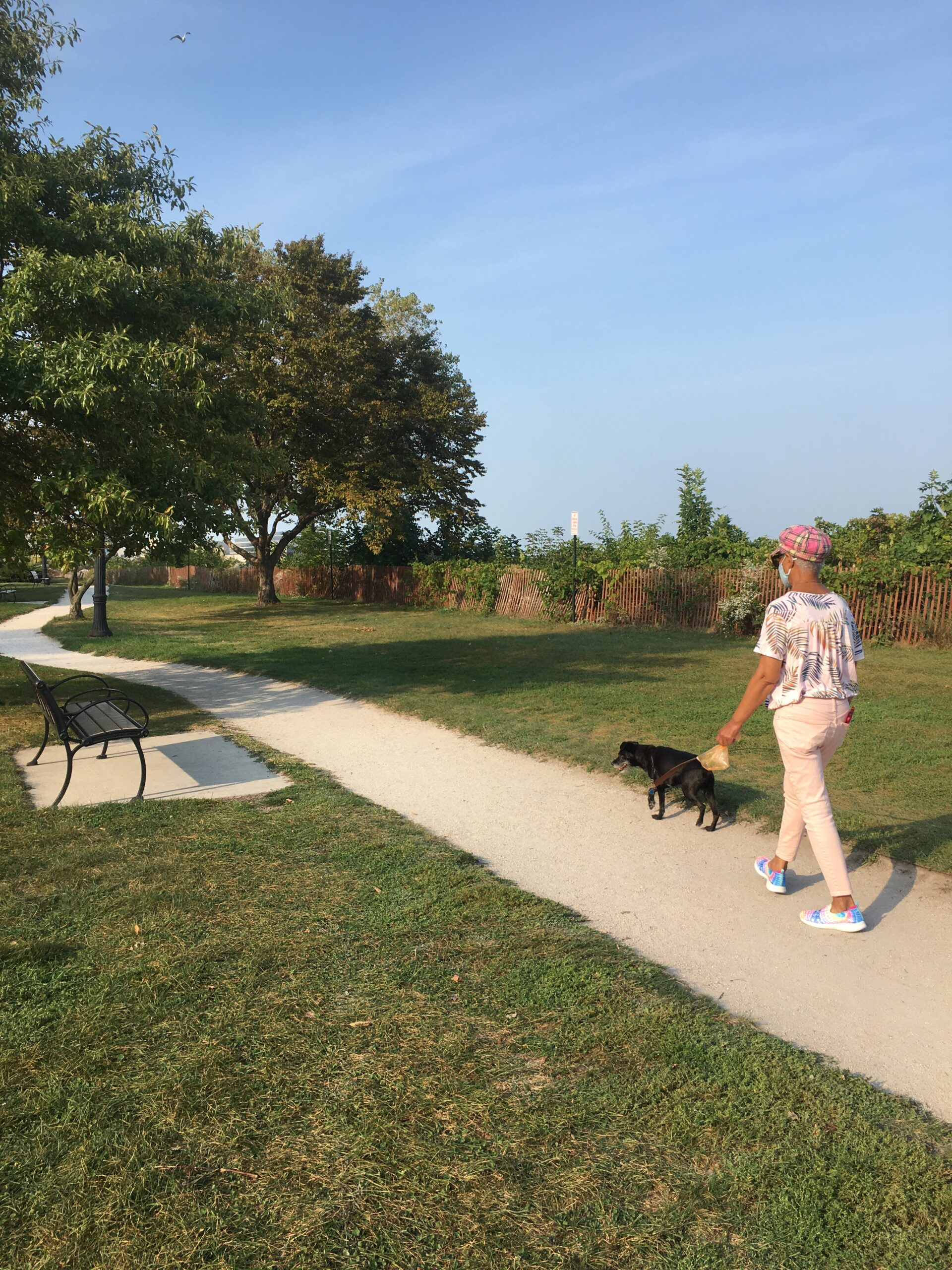 Lincoln Street Beach surfaces as possible dog park candidate